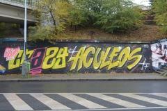 CRAZY ACULEOS