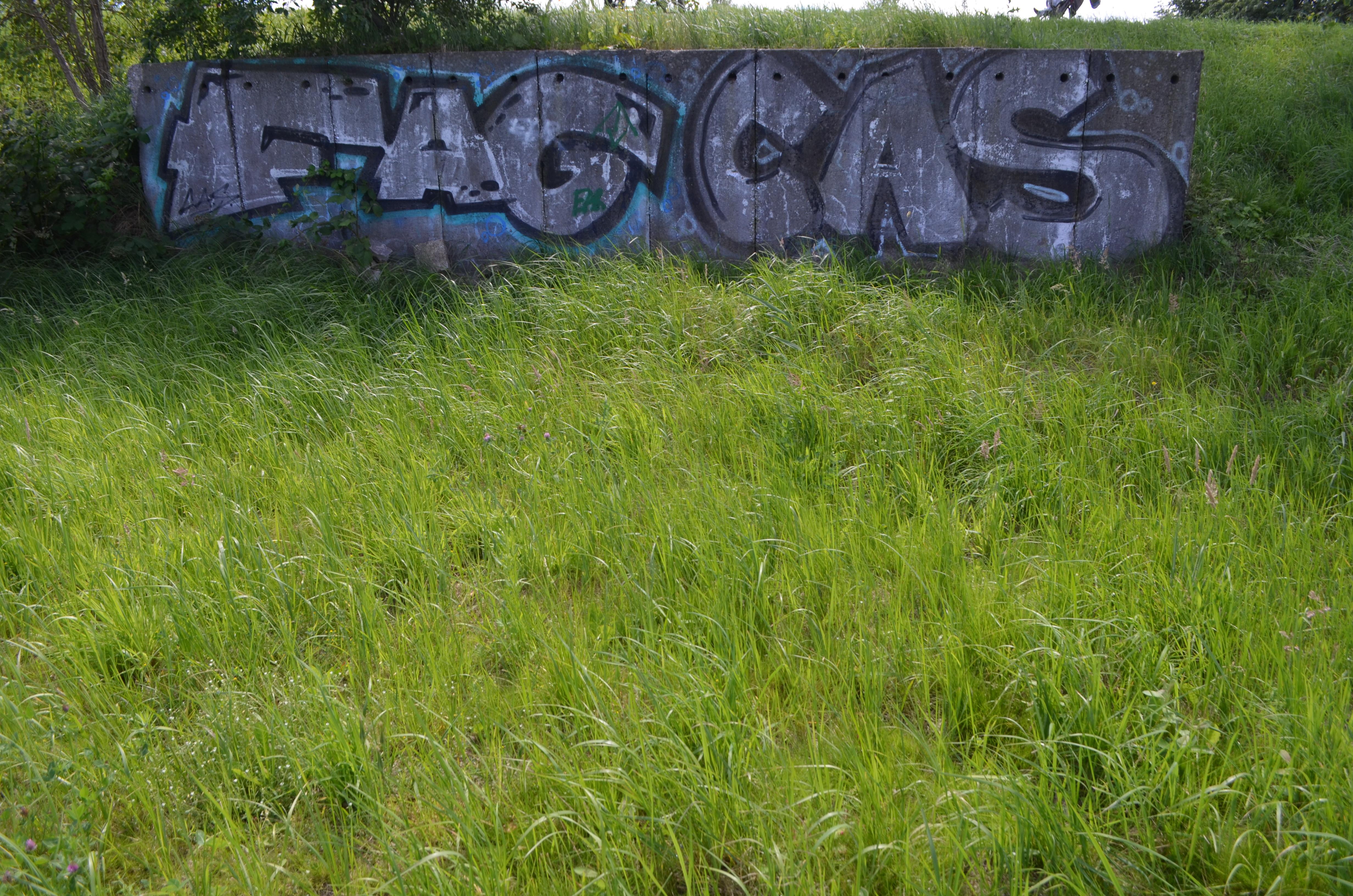 FAG CAS