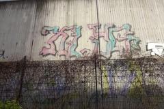 XL YG