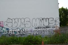 ELVIS MAUS